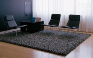 Karpet pengisi ruangan