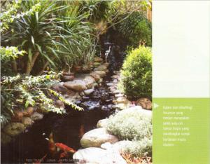 kolam ikan tropis